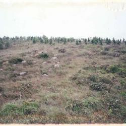 april-1997-3