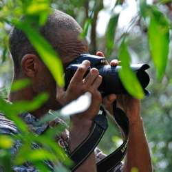 Photographer hiding in the trees
